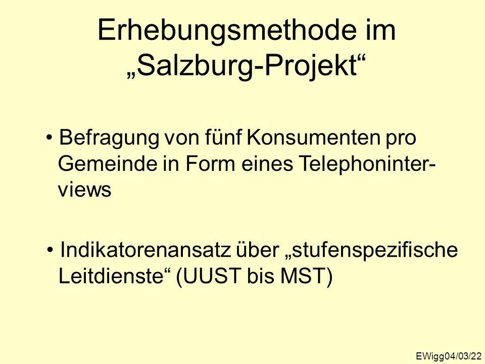 """Erhebungsmethode im """"Salzburg-Projekt"""