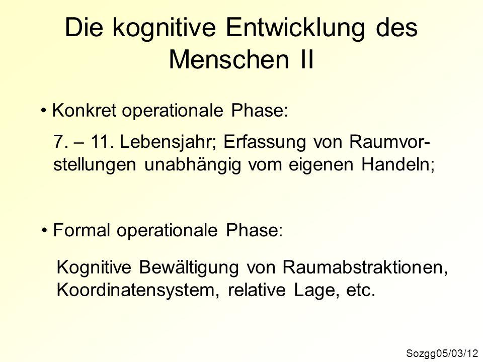 Die kognitive Entwicklung des Menschen II