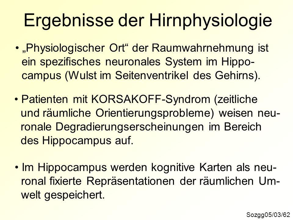 Ergebnisse der Hirnphysiologie