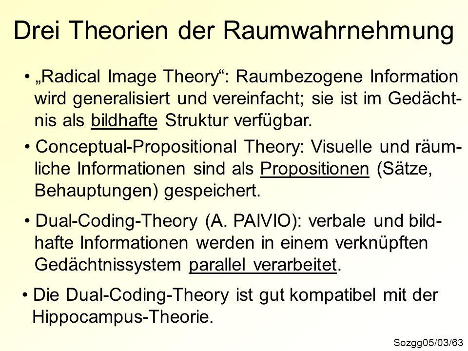 Drei Theorien der Raumwahrnehmung