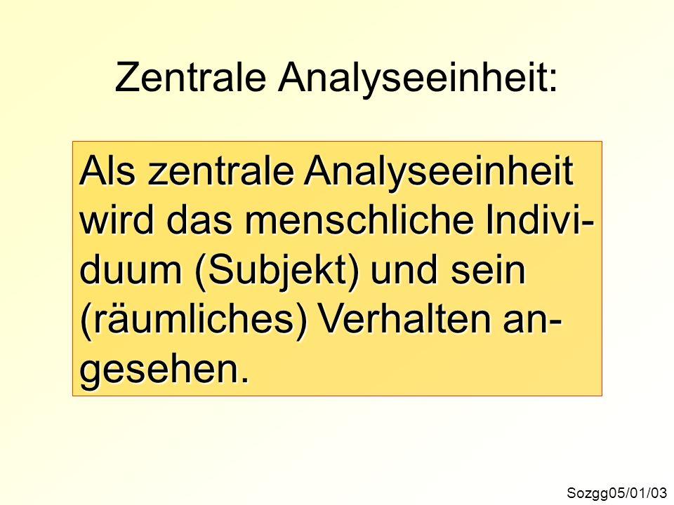 Zentrale Analyseeinheit: