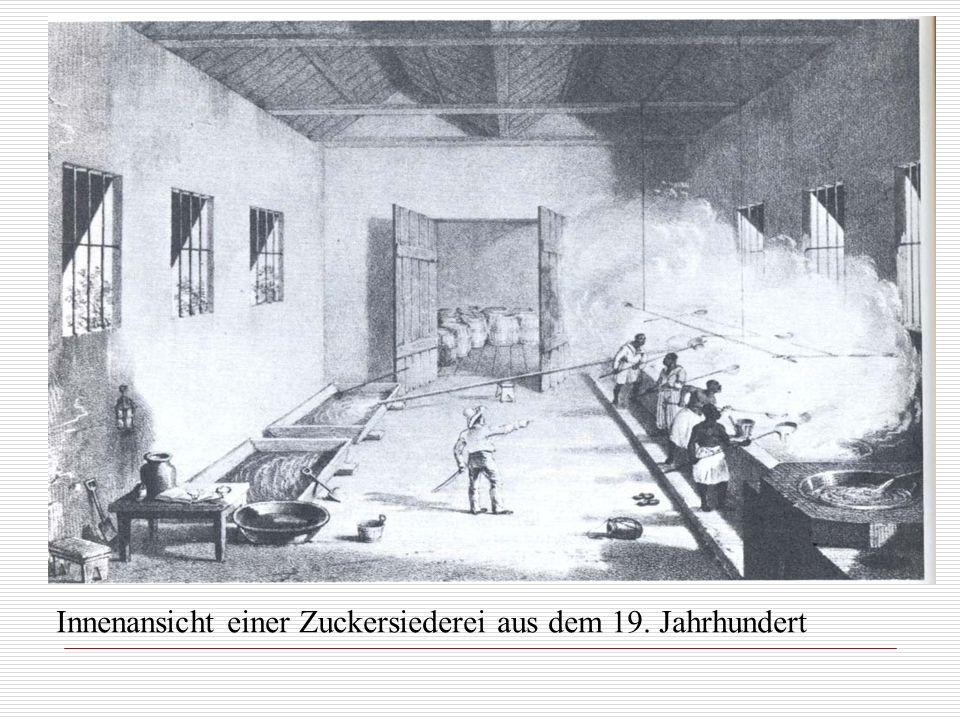 Innenansicht einer Zuckersiederei aus dem 19. Jahrhundert