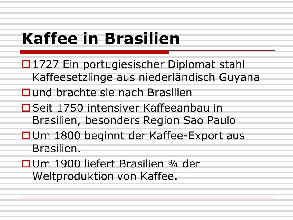 Kaffee in Brasilien 1727 Ein portugiesischer Diplomat stahl Kaffeesetzlinge aus niederländisch Guyana.
