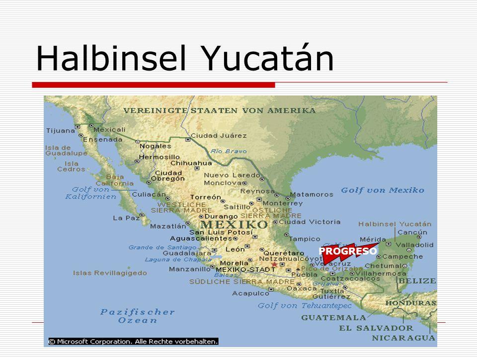 Halbinsel Yucatán PROGRESO