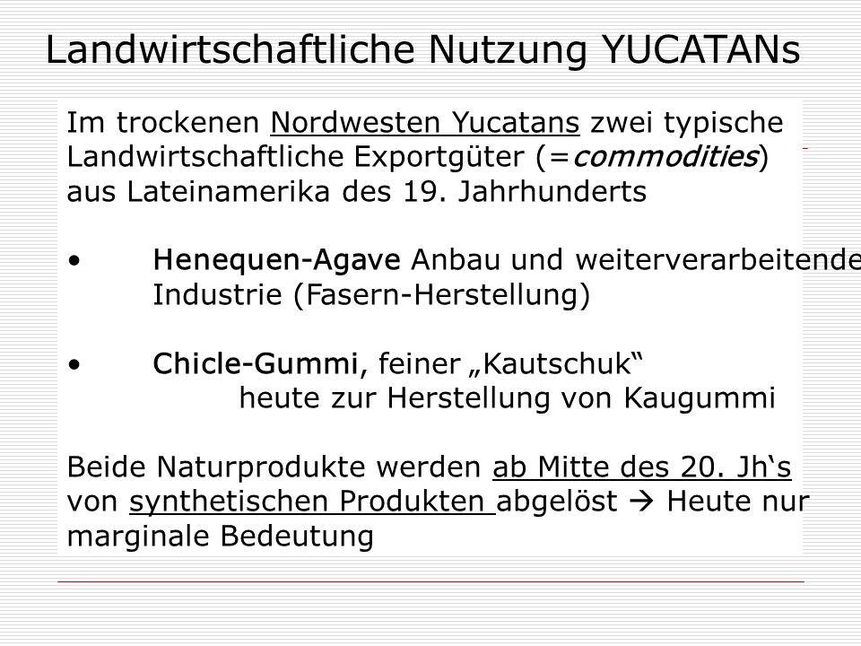 Landwirtschaftliche Nutzung YUCATANs