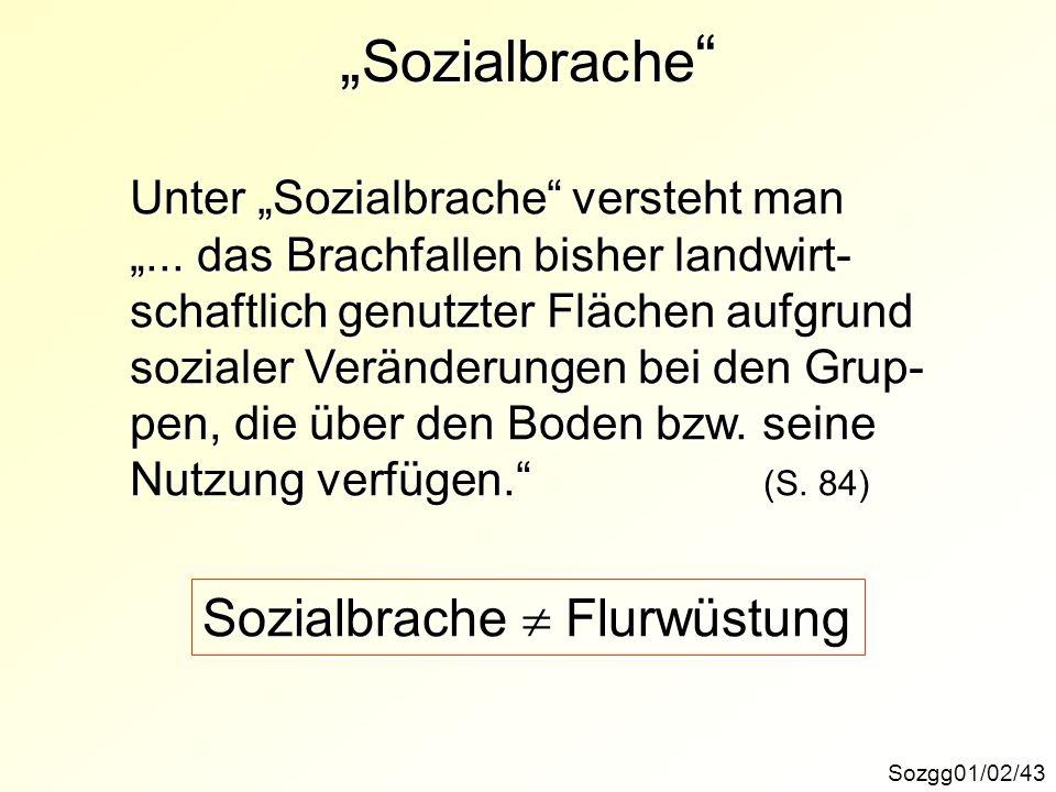 """""""Sozialbrache Sozialbrache  Flurwüstung"""