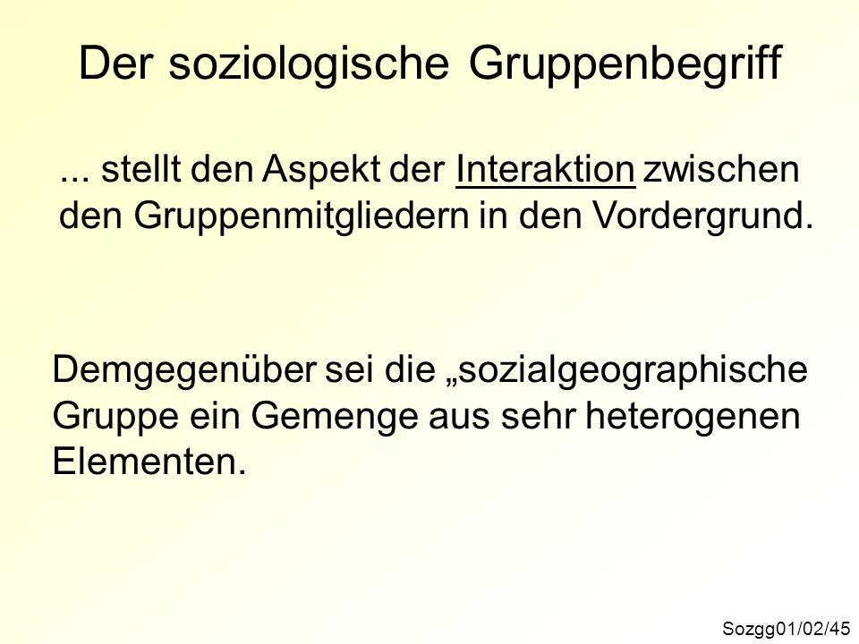 Der soziologische Gruppenbegriff