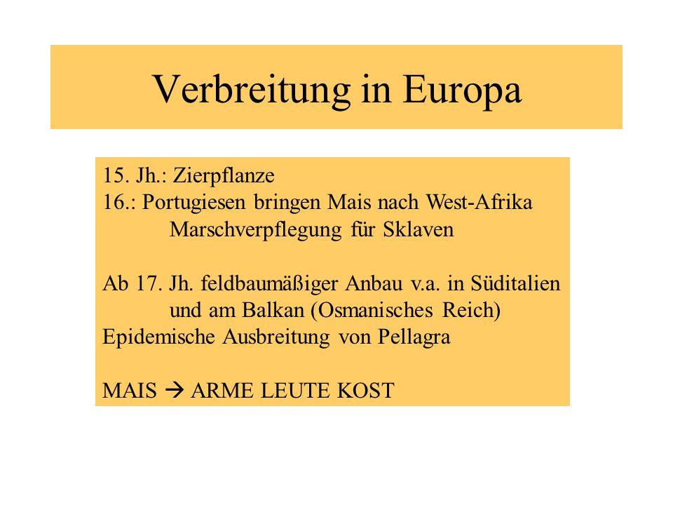 Verbreitung in Europa 15. Jh.: Zierpflanze