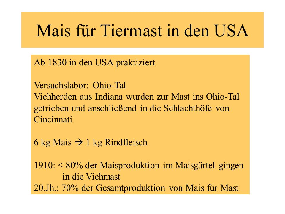 Mais für Tiermast in den USA