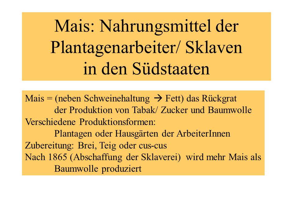 Mais: Nahrungsmittel der Plantagenarbeiter/ Sklaven in den Südstaaten
