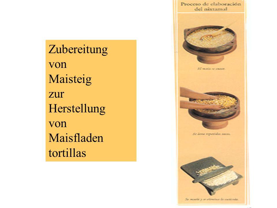 Zubereitung von Maisteig zur Herstellung Maisfladen tortillas