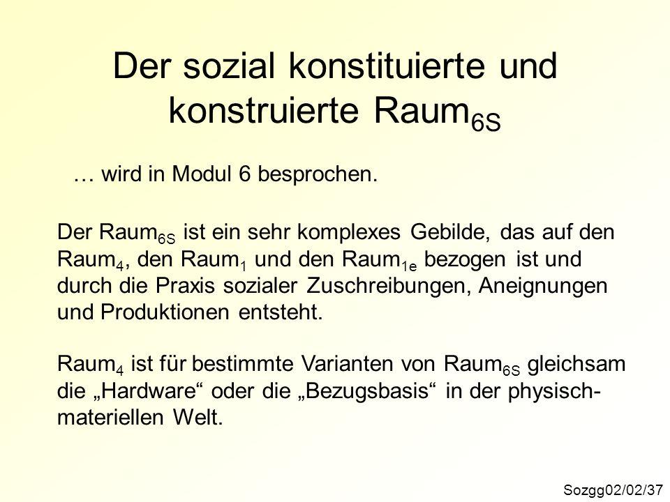 Der sozial konstituierte und konstruierte Raum6S