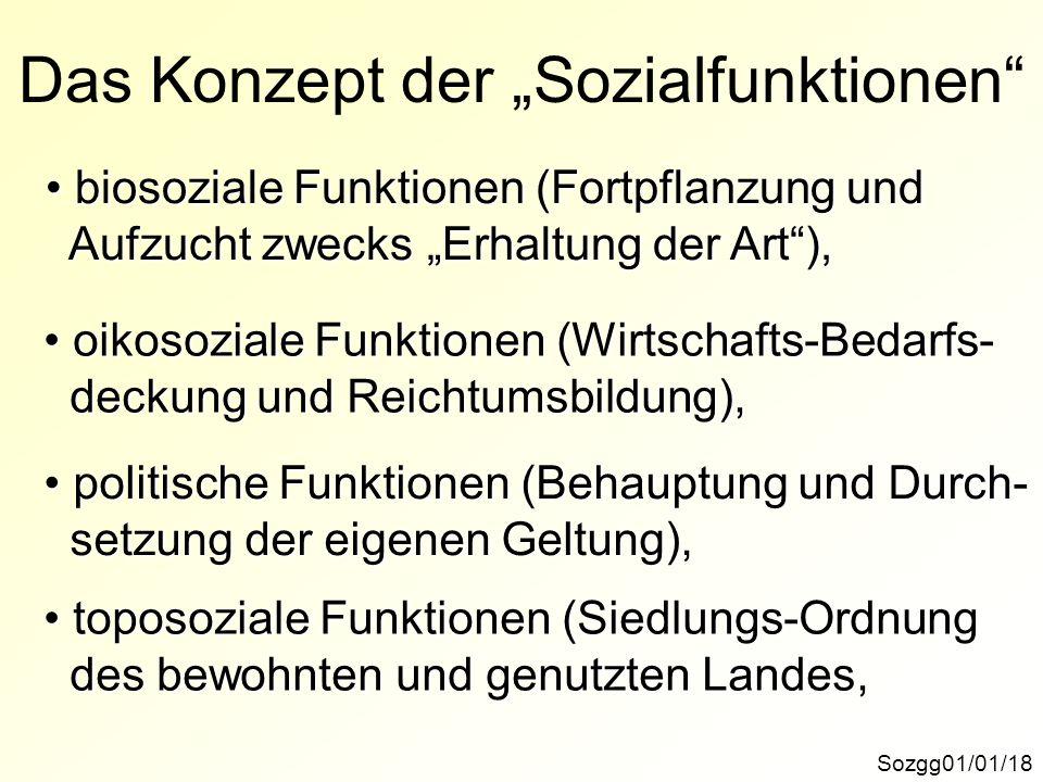 """Das Konzept der """"Sozialfunktionen"""