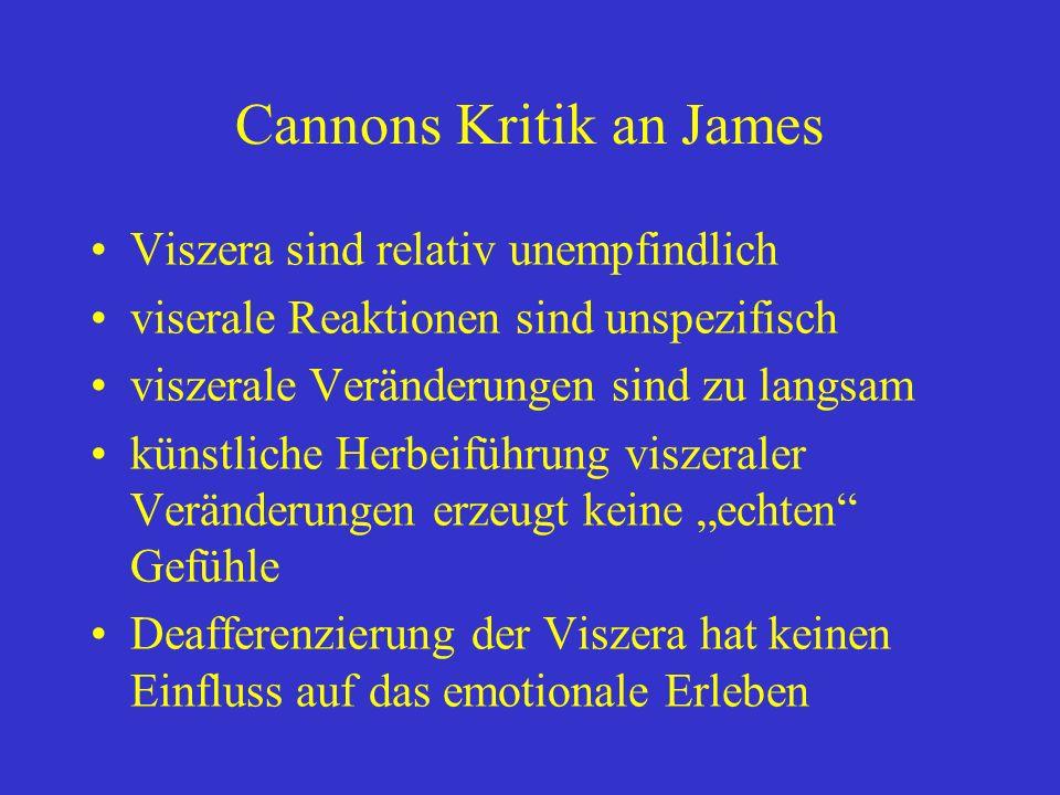 Cannons Kritik an James