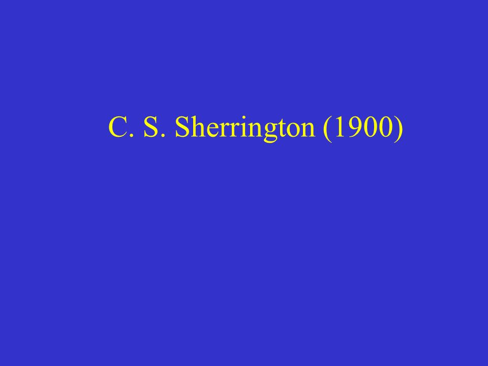 C. S. Sherrington (1900)