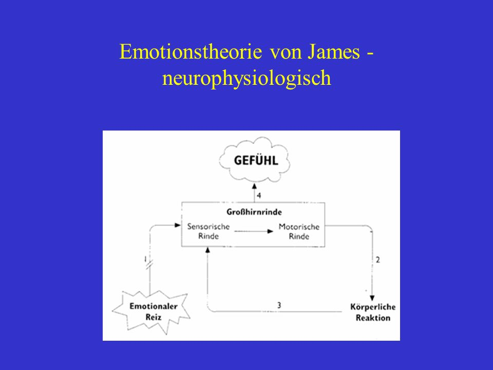 Emotionstheorie von James - neurophysiologisch