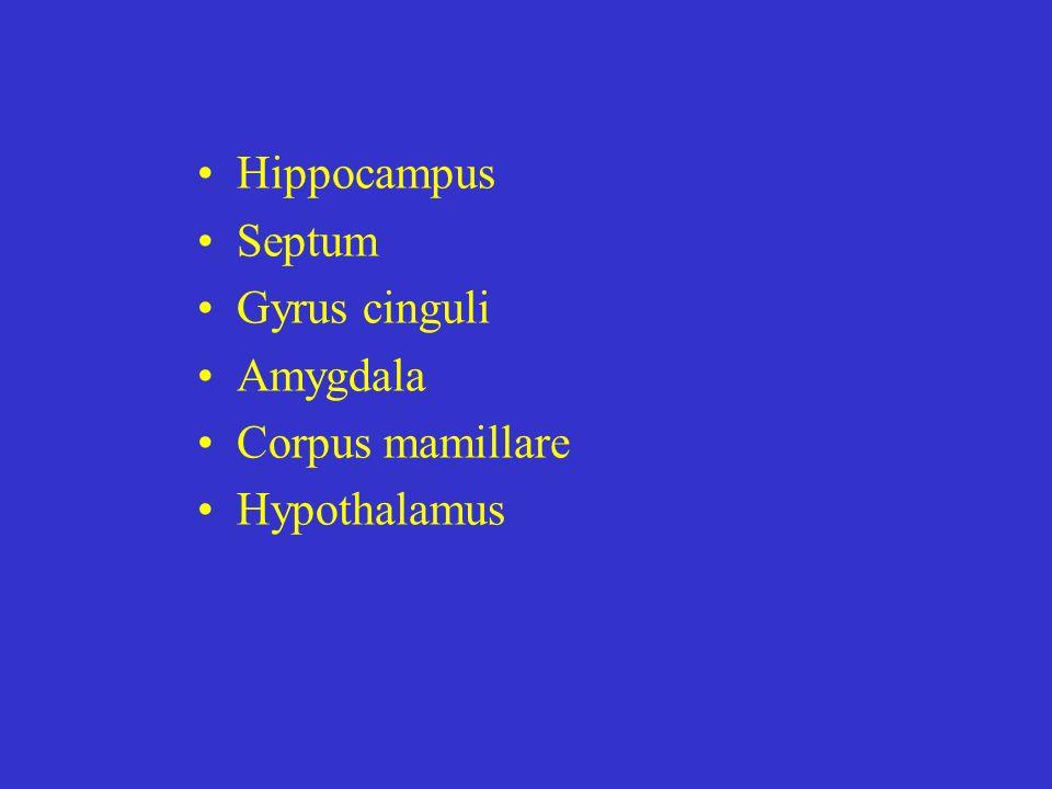 Hippocampus Septum Gyrus cinguli Amygdala Corpus mamillare Hypothalamus