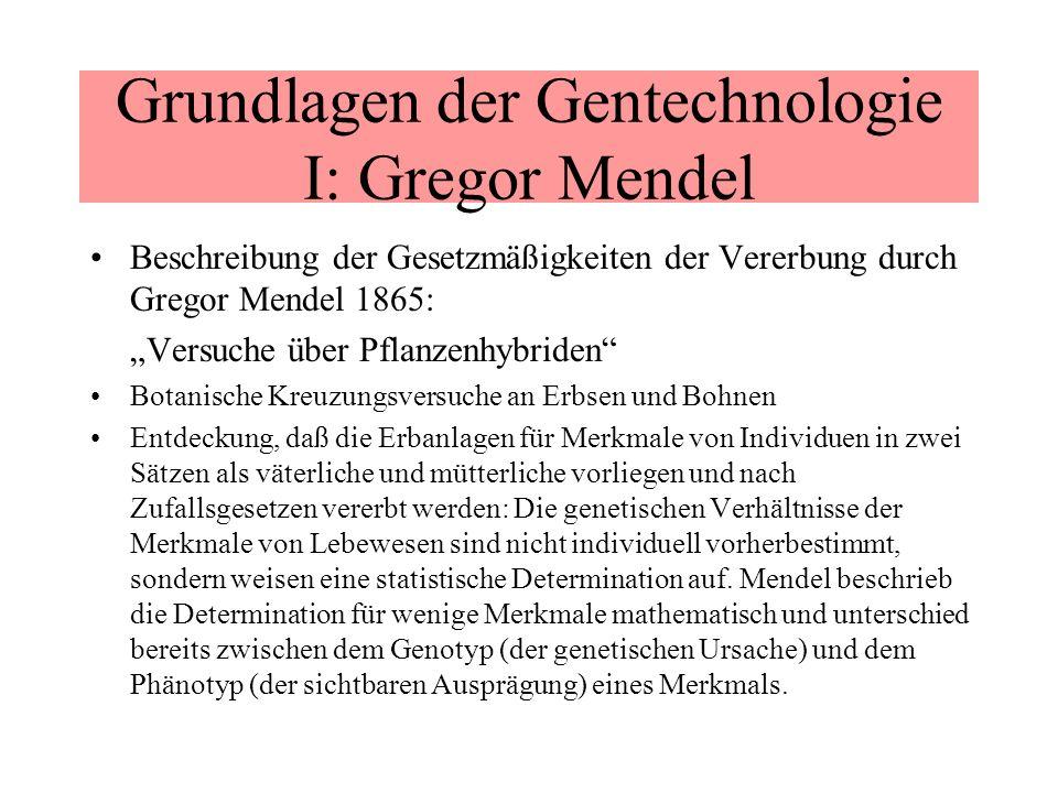 Grundlagen der Gentechnologie I: Gregor Mendel