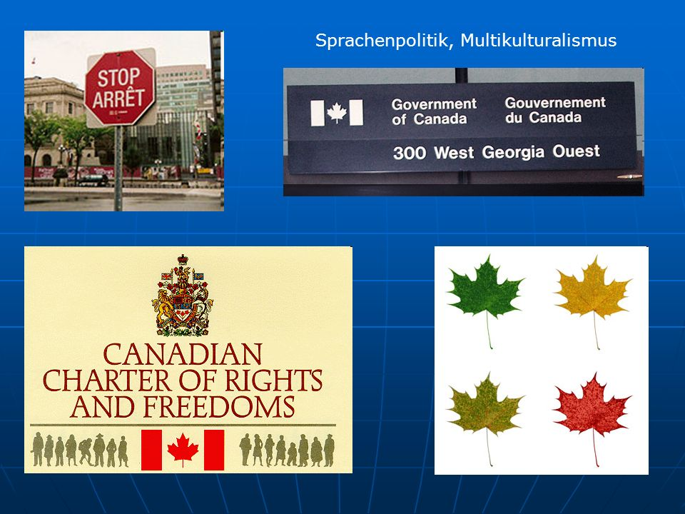 Sprachenpolitik, Multikulturalismus