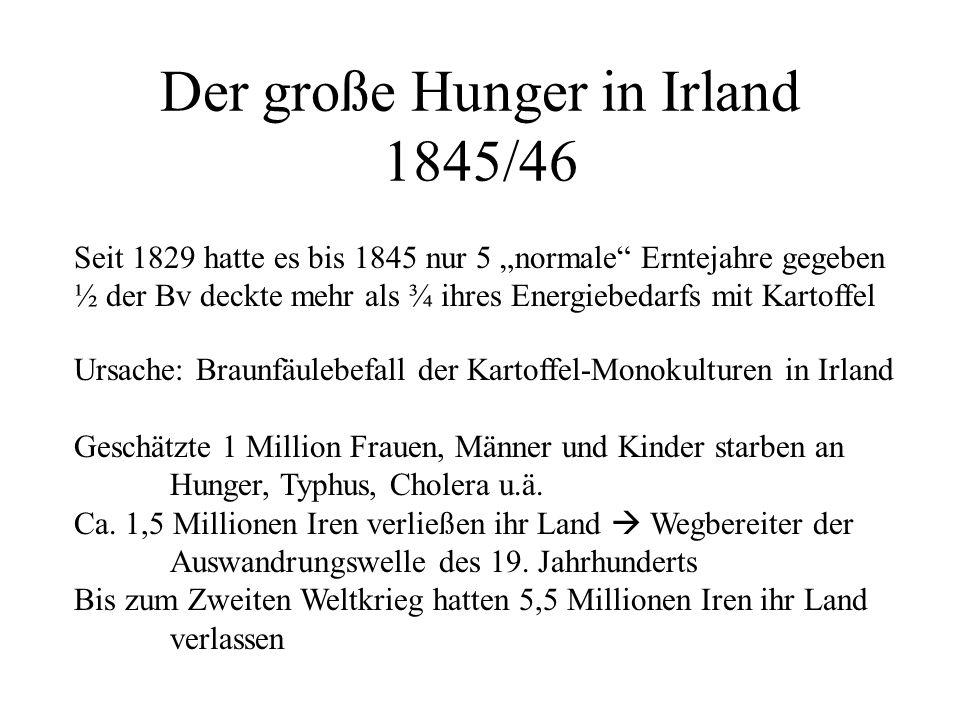 Der große Hunger in Irland 1845/46
