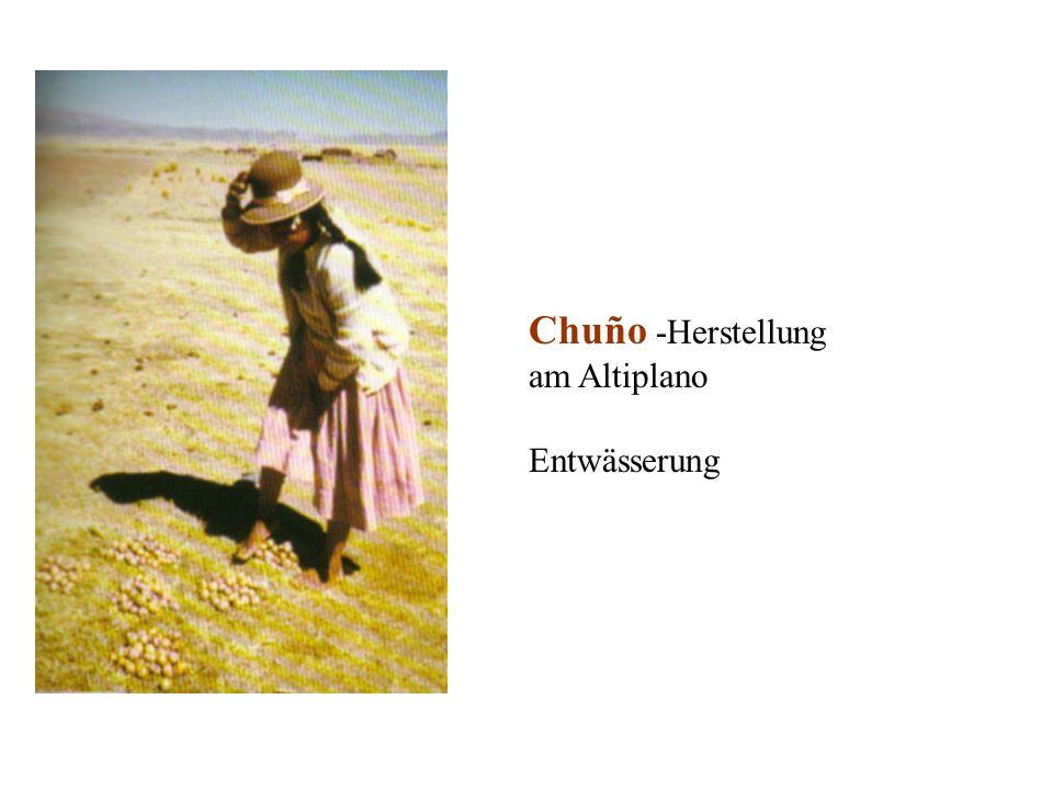 Chuño -Herstellung am Altiplano