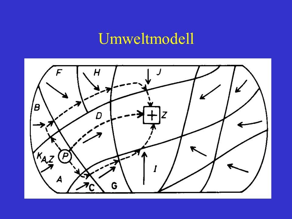 Umweltmodell