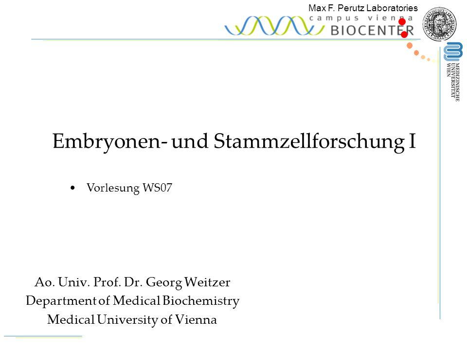 Embryonen- und Stammzellforschung I