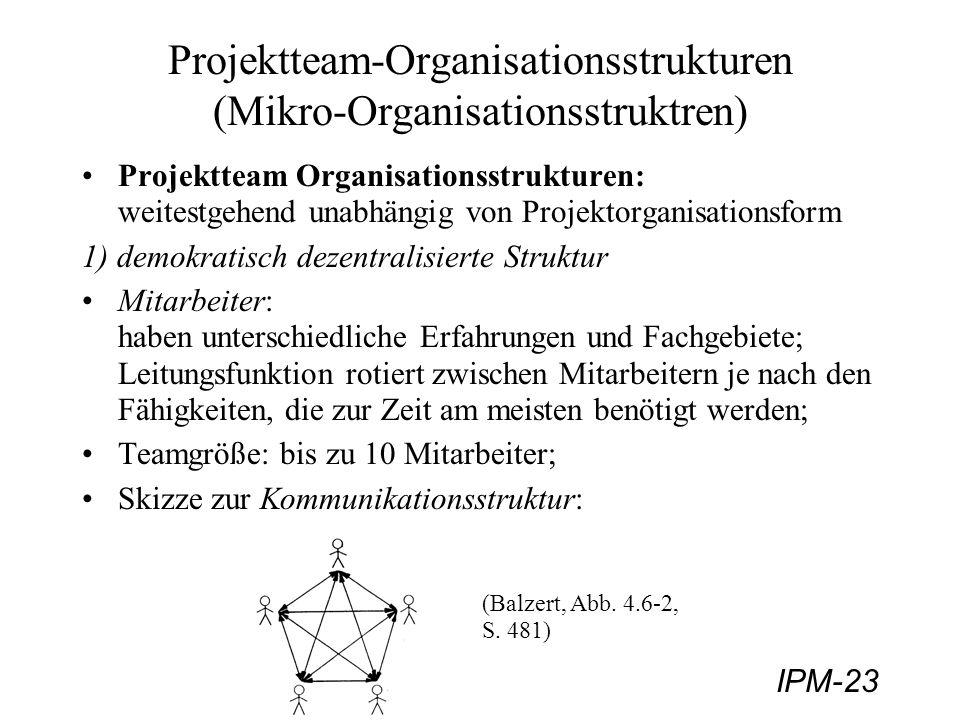 Projektteam-Organisationsstrukturen (Mikro-Organisationsstruktren)