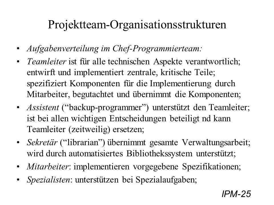 Projektteam-Organisationsstrukturen