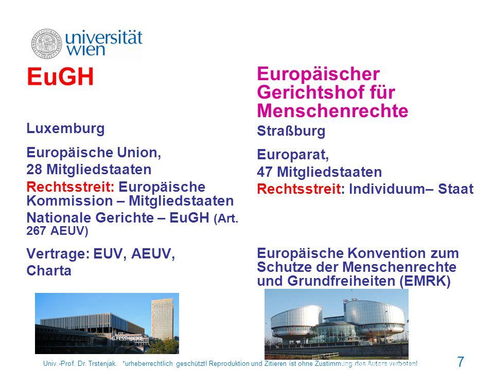 EuGH Europäischer Gerichtshof für Menschenrechte Luxemburg Straßburg