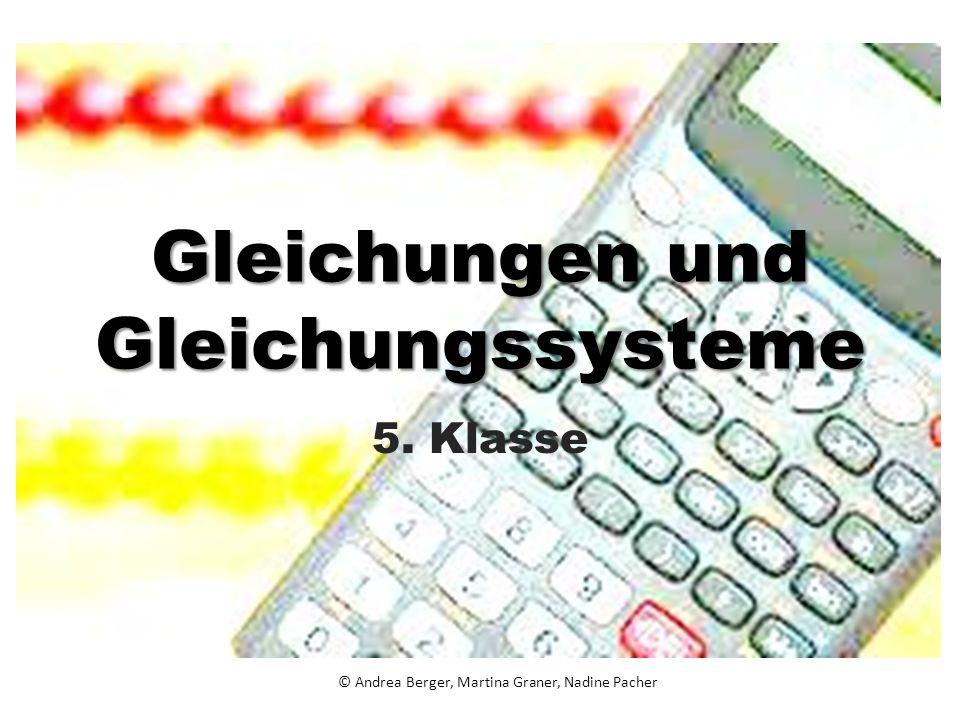Gleichungen und Gleichungssysteme