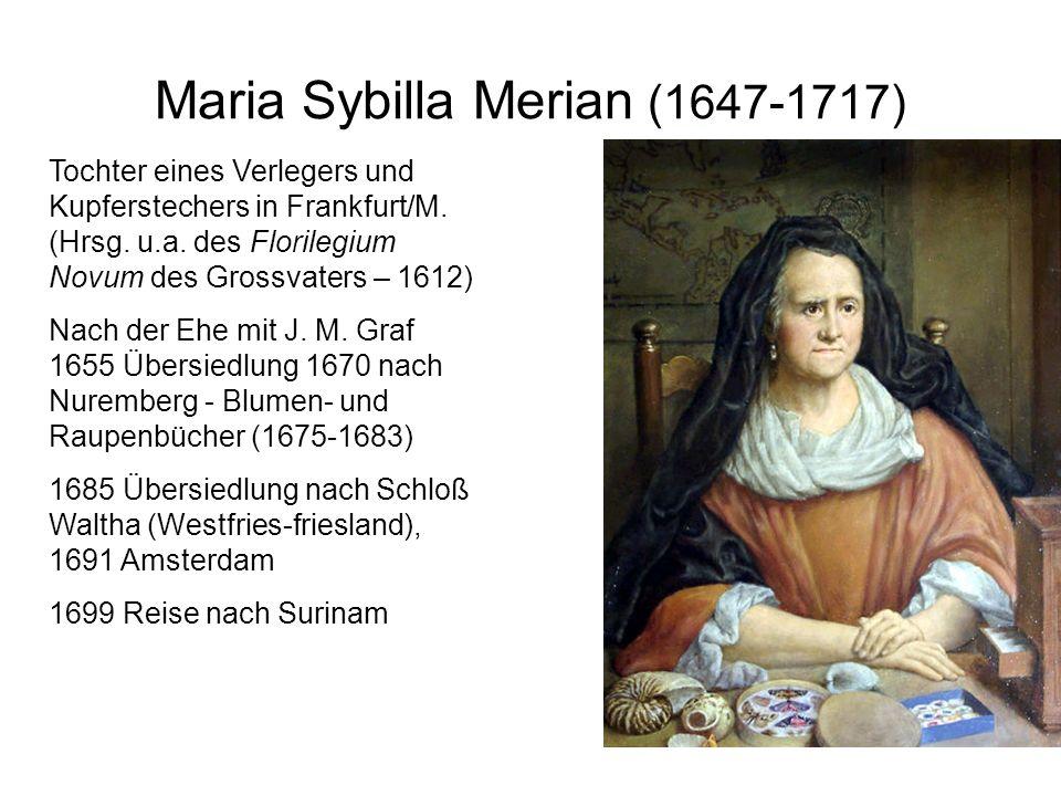 Maria Sybilla Merian (1647-1717)