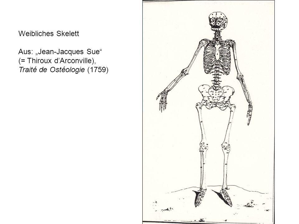 """Weibliches Skelett Aus: """"Jean-Jacques Sue (= Thiroux d'Arconville), Traité de Ostéologie (1759)"""