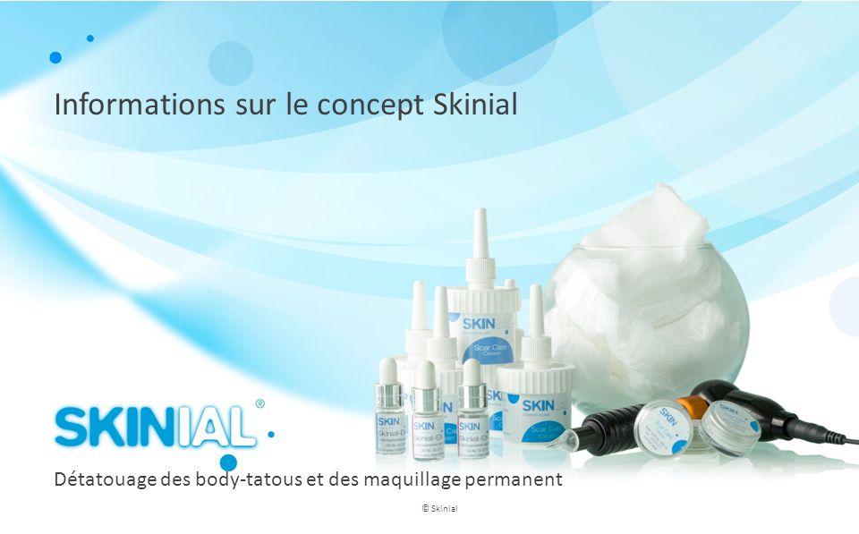 Informations sur le concept Skinial