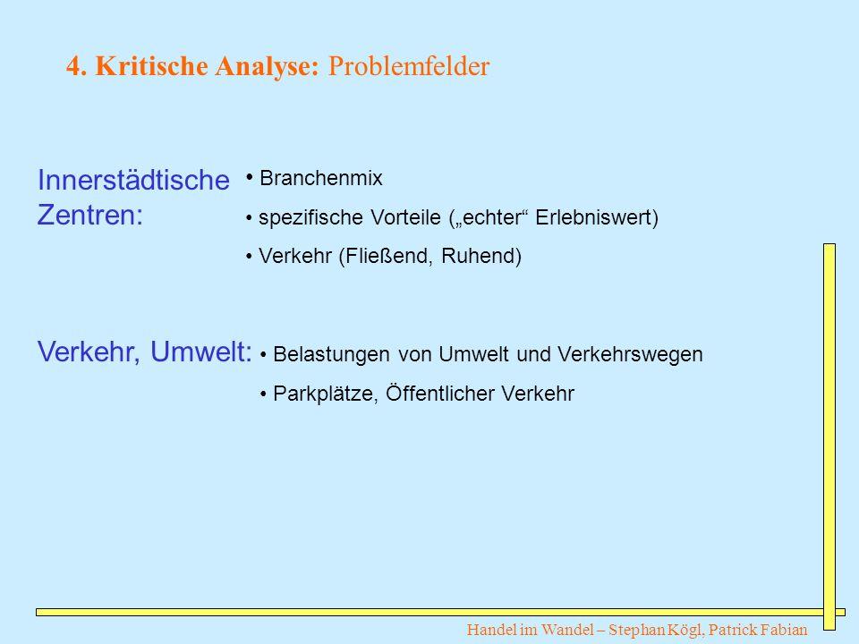 4. Kritische Analyse: Problemfelder
