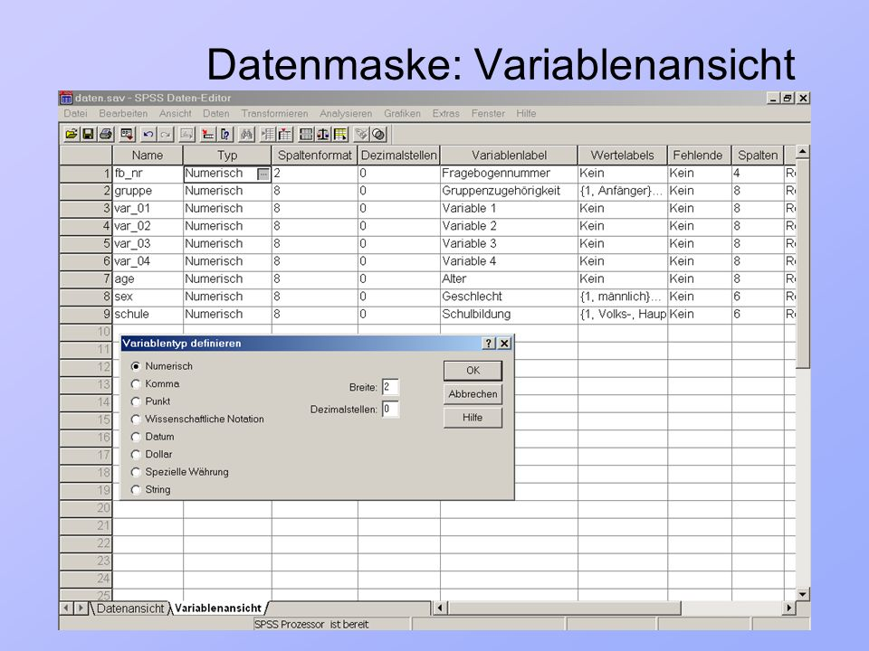 Datenmaske: Variablenansicht