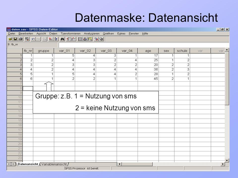 Datenmaske: Datenansicht