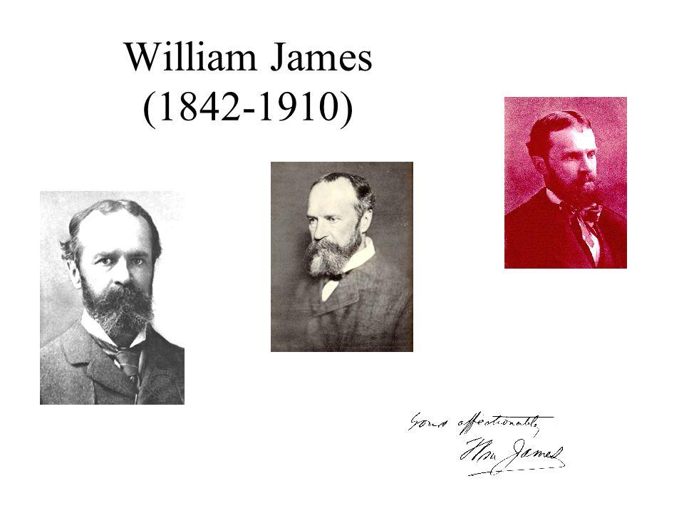 William James (1842-1910) 80iger und 90iger Jahre