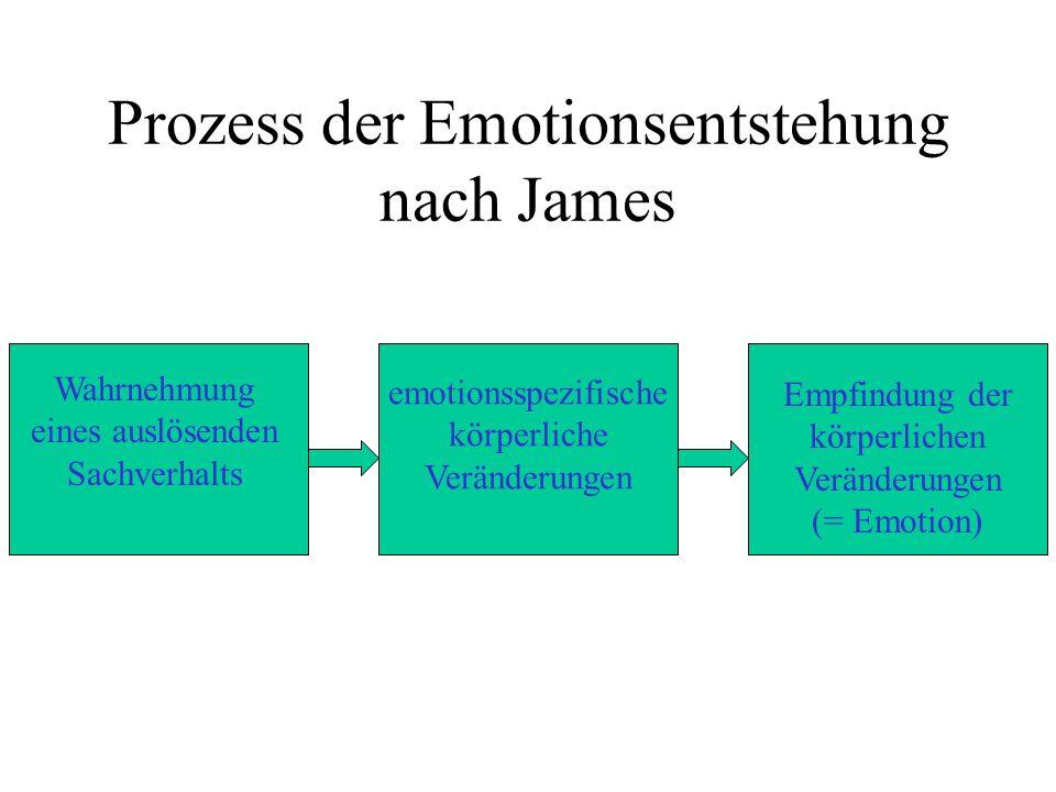 Prozess der Emotionsentstehung nach James