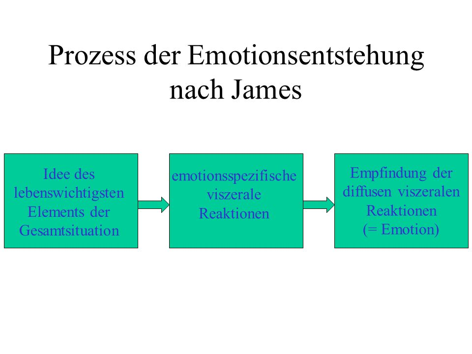 Prozess der Emotionsentstehung nach James