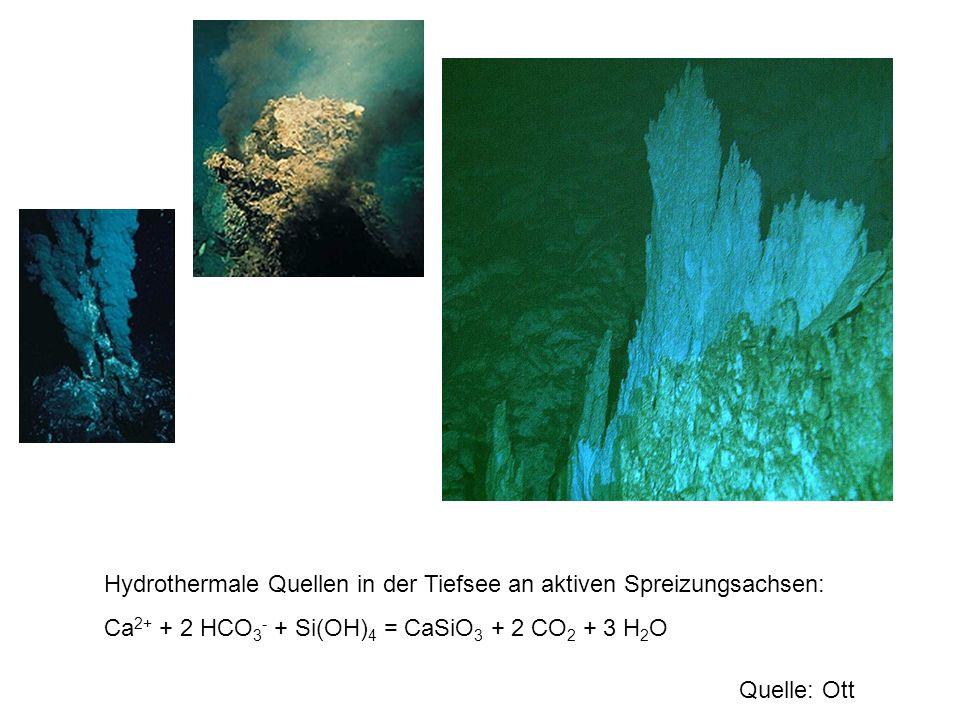 Hydrothermale Quellen in der Tiefsee an aktiven Spreizungsachsen: