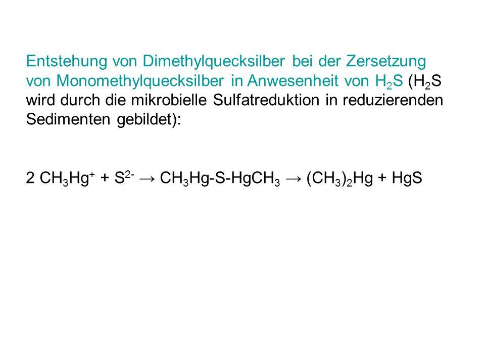 Entstehung von Dimethylquecksilber bei der Zersetzung von Monomethylquecksilber in Anwesenheit von H2S (H2S wird durch die mikrobielle Sulfatreduktion in reduzierenden Sedimenten gebildet):