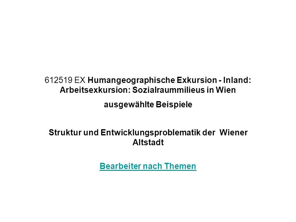 Struktur und Entwicklungsproblematik der Wiener Altstadt
