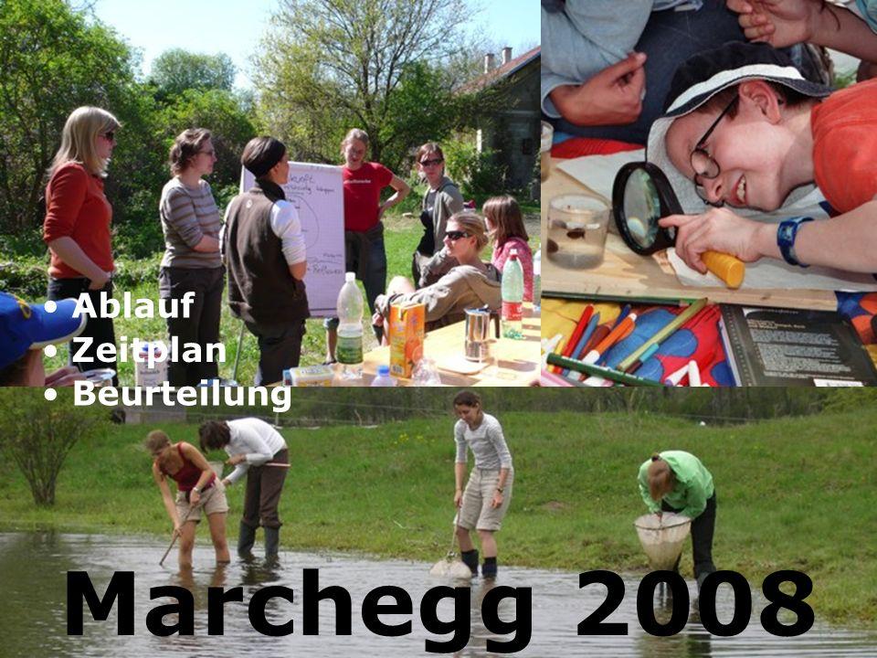 Ablauf Zeitplan Beurteilung Marchegg 2008