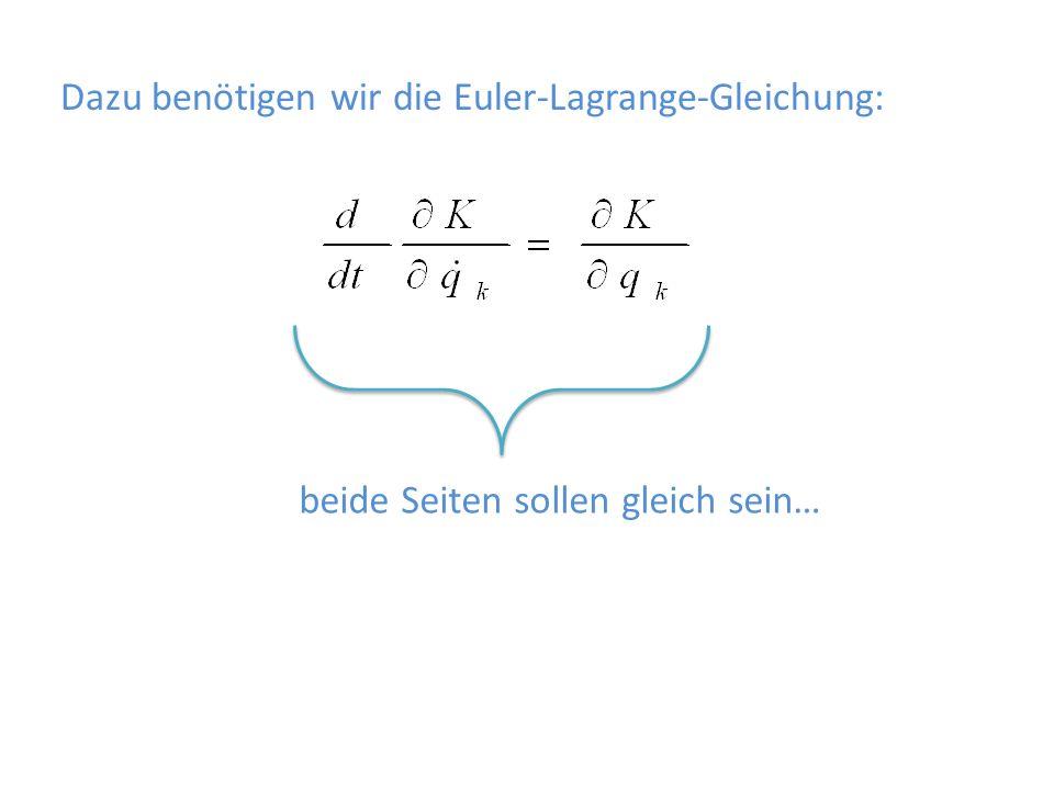 Dazu benötigen wir die Euler-Lagrange-Gleichung: