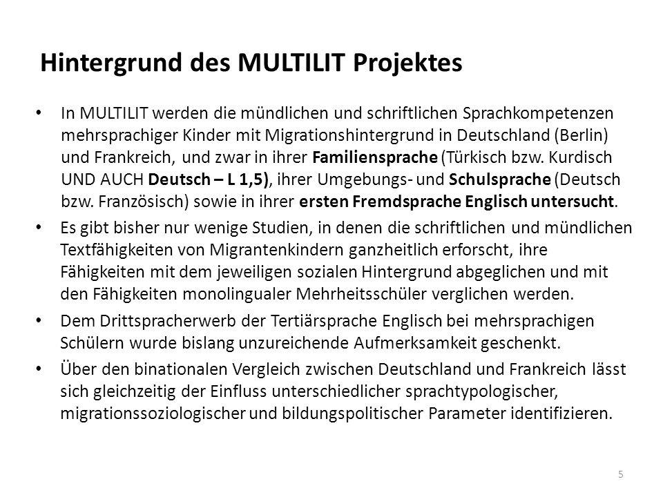 Hintergrund des MULTILIT Projektes