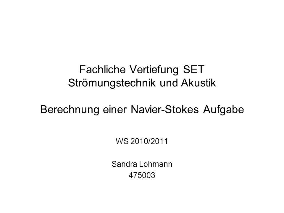 Fachliche Vertiefung SET Strömungstechnik und Akustik Berechnung einer Navier-Stokes Aufgabe