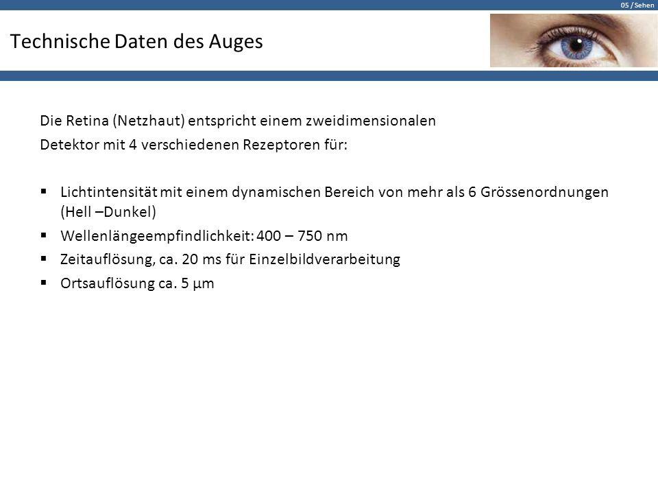 Technische Daten des Auges