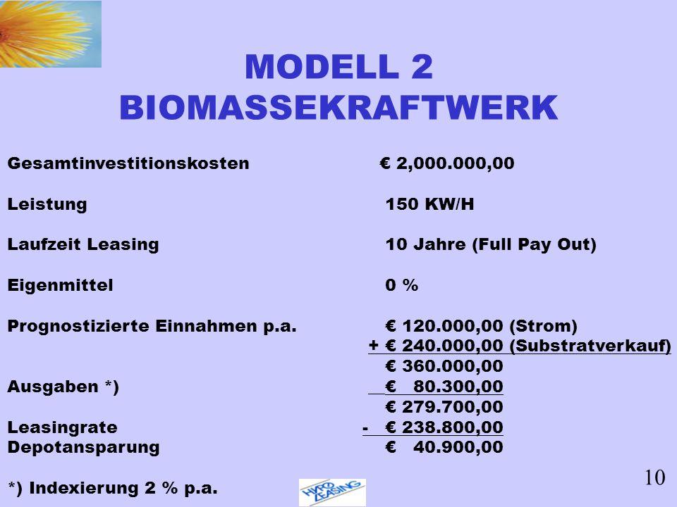 MODELL 2 BIOMASSEKRAFTWERK