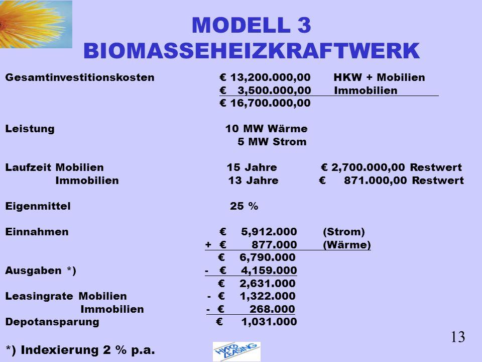 MODELL 3 BIOMASSEHEIZKRAFTWERK